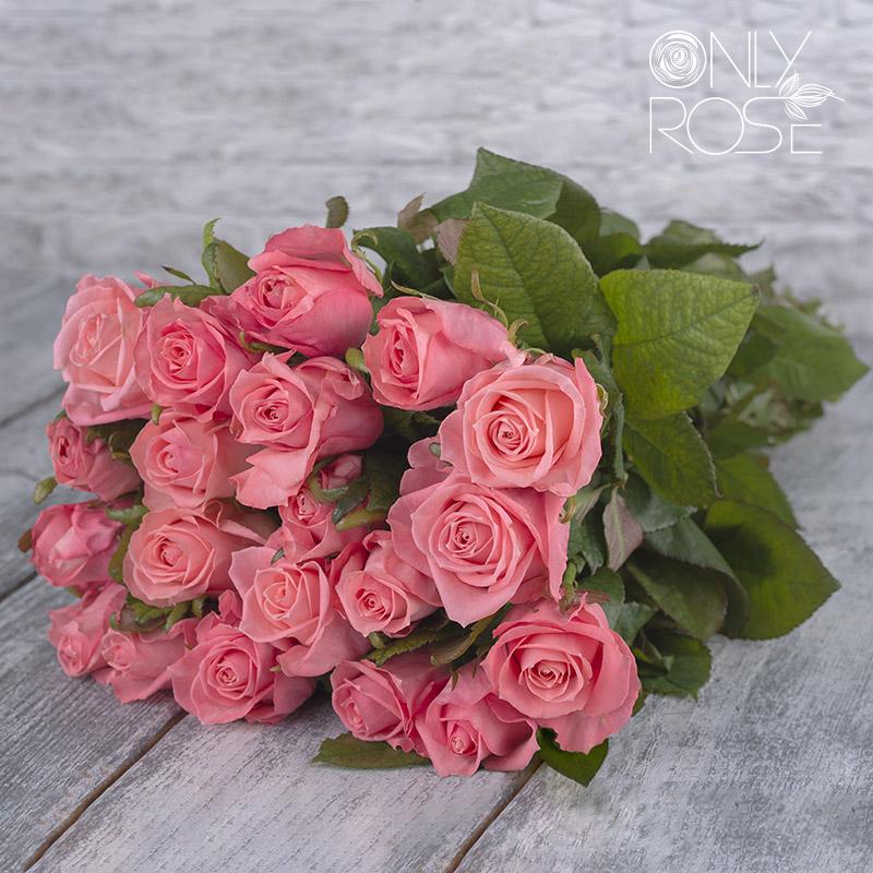 Роза Анна Карина